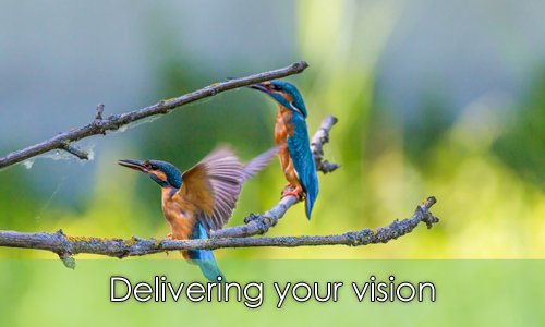 delivering your vision